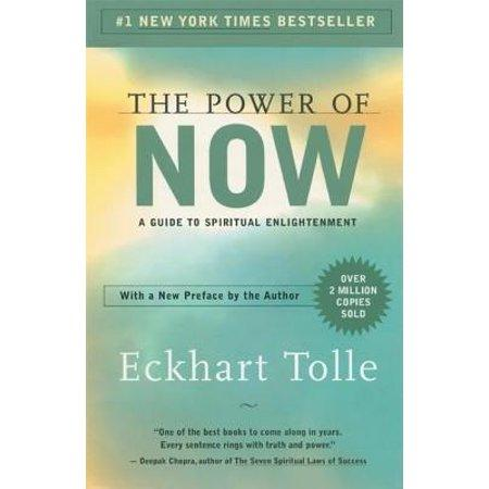 Image result for the power of now